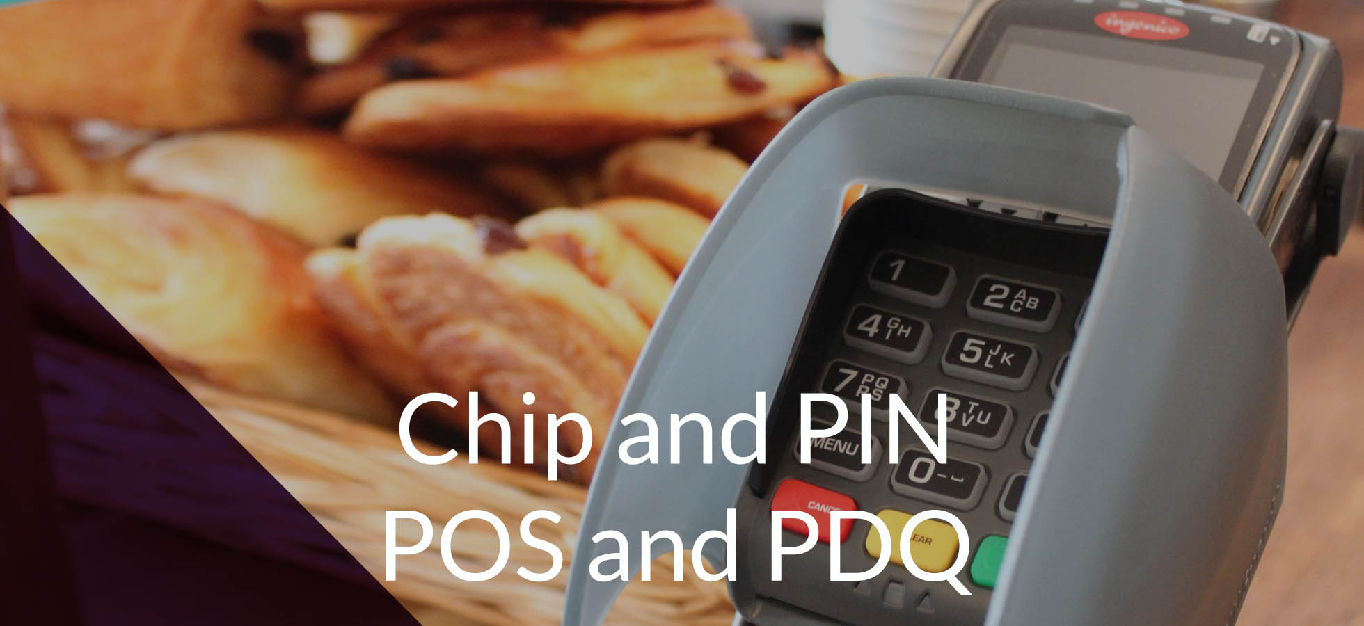 Chip and pin POS and PDQ pin protection
