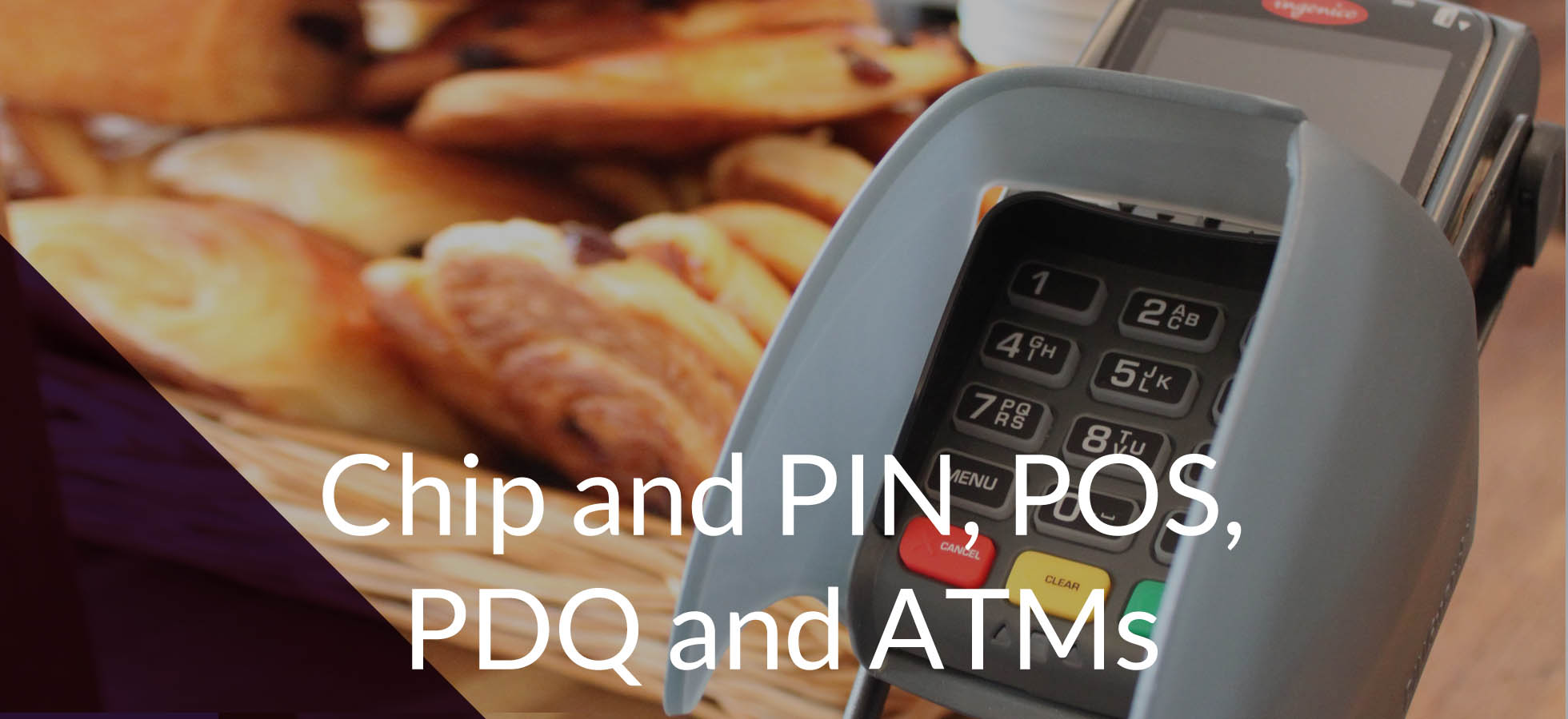Chip and Pin, POS, PDQ and ATM pin protection